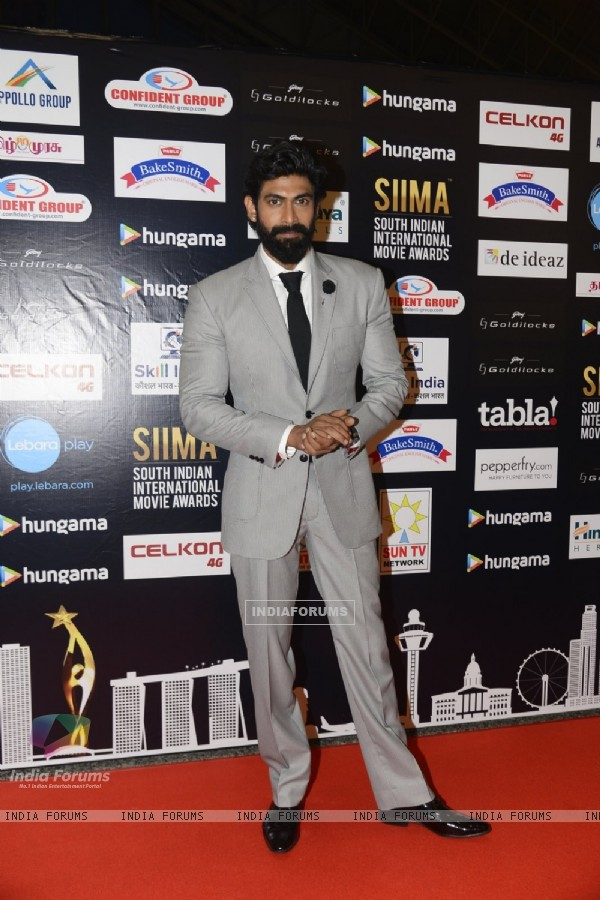 Rana Daggubati looks Dapper at SIIMA Awards 2016
