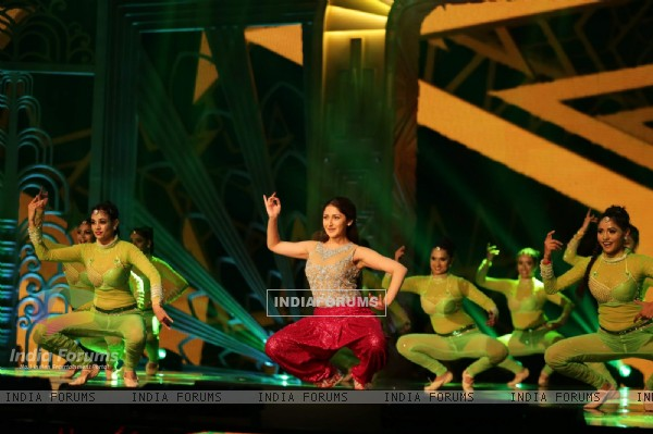 Sayesha Saigal at SIIMA Awards 2016