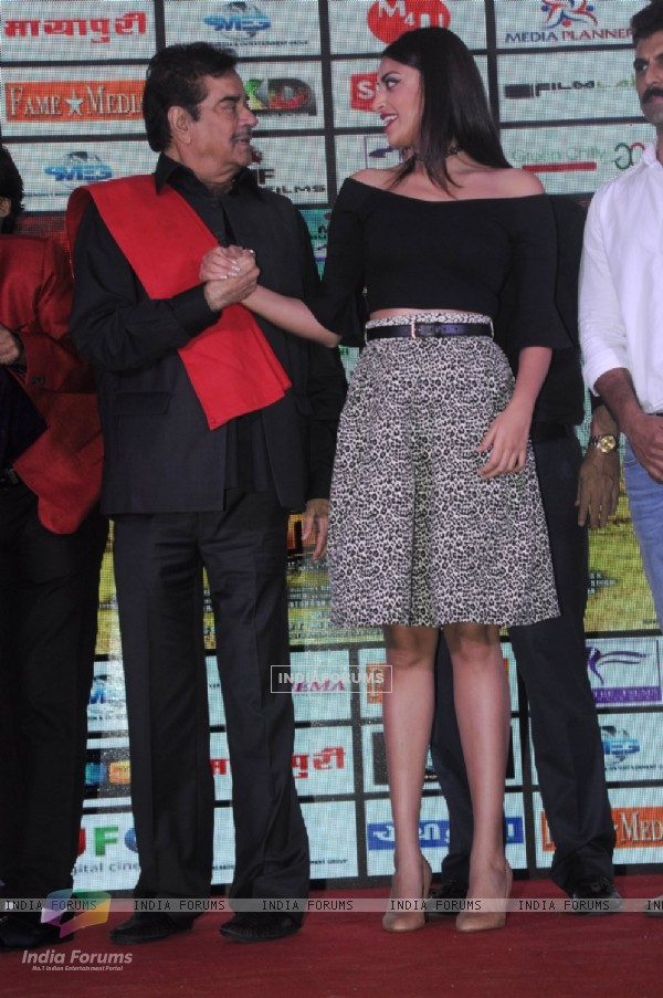 Ranjeet at Music launch of MMIRSA