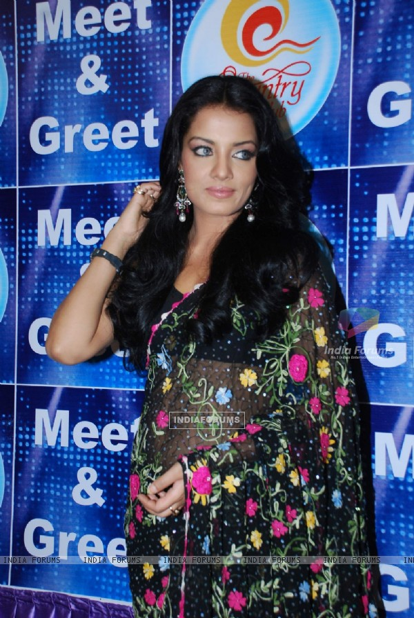 Celina Jaitley at Country Club New Year''s bash press meet at Country Club, Andheri