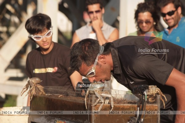 Still from tv show Fear Factor - Khatron Ke Khiladi x 3