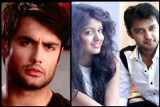 Even if co-stars fall in love, they should not disturb the shoot: Vivian Dsena