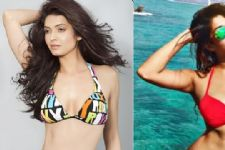 #InternationalBikiniDay :Top 10 Bikini Babes of Tellywood!