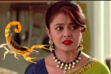 OMG! Gopi to get attacked by a Scorpion in Saath Nibhana Saathiya!