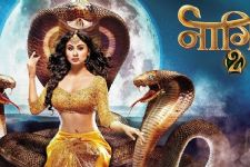 5 reasons to watch out for 'Naagin 2'!