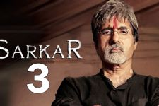 Popular Television actor joins the cast of Sarkar 3!