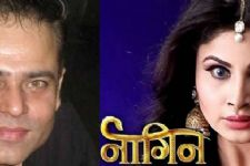 Next in line: Anky 2 gets 'KILLED' in Naagin 2!