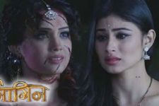 OMG! Shesha and Shivangi 'UNITE' to fight evil in Naagin 2!