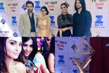 'Ishqbaaaz', 'Naagin' and 'Tenali Rama' get a SPECIAL award at the Zee Rishtey Awards 2017!
