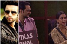 This is what Aamir Ali has to say about Hina and Vikas's budding friendship!
