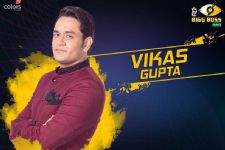 "#BB11: ""My equation with Shilpa is okay, neither good nor lovable.""- Vikas Gupta"