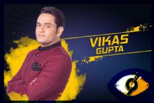 #BB11: While Hina Khan & Shilpa Shinde get IMMENSE support, here's who wants Vikas to WIN