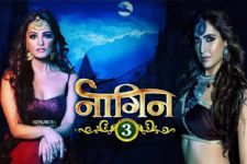 #REVEALED: Here's the entire plot of 'Naagin 3'