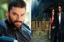 Afer 'Ishqbaaaz', Nikitin Dheer to be seen in Colors' Naagin 3