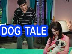 It's the comic tale of Vibhuti and Dog on Bhabhi Ji Ghar Pe Hain?