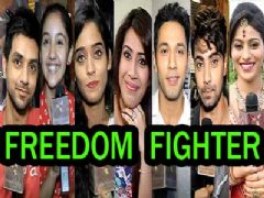 TV celebs favorite freedom fighters