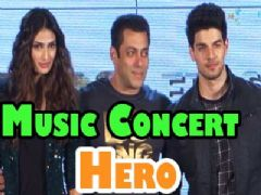 Salman Khan at Hero's Music Concert