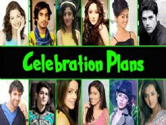 TV celebs' happening new year 2016 party plans