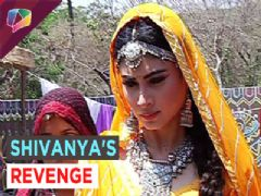 Shivanya tries to kill Ankush on Naagin