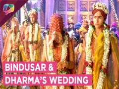 Bindusar And Dharma Get Married In A Royal Way | Chandranandini