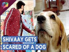 Shivaay Is Scared Of His Neighbour | New Twist | Ishqbaaaz | Star Plus
