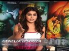 Genelia D Souza Talks About Force