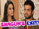 Shagun's role to end on Yeh Hai Mohabbatein? Video