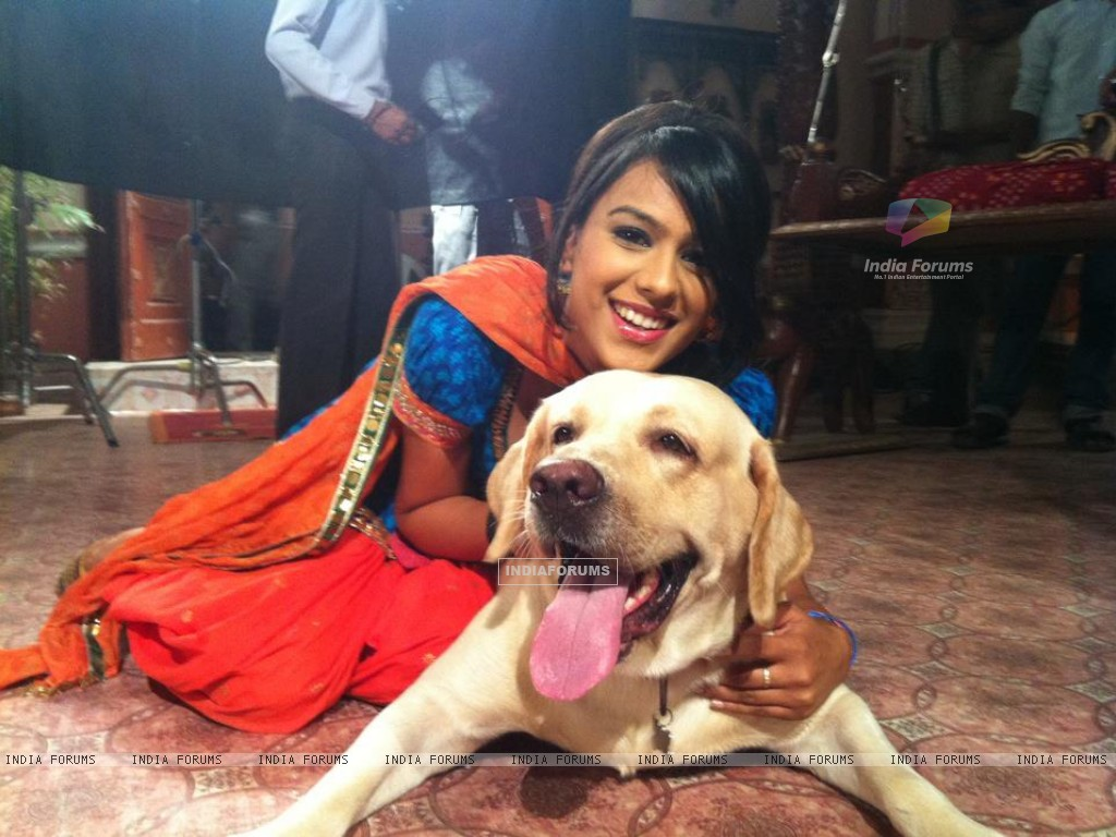 Nia Sharma on sets of Ek Hazaaron Mein Meri Behna Hain (173339) size:1024x768