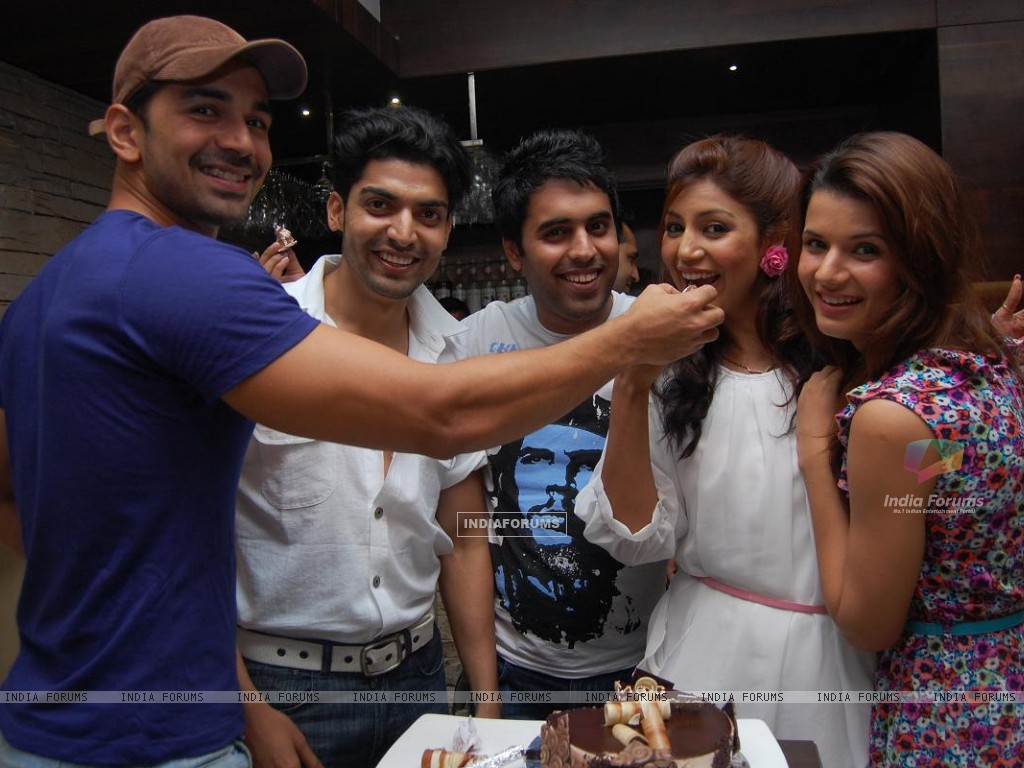 Gurmeet, Debina with Abhinav Shukla & friends (198615) size:1024x768