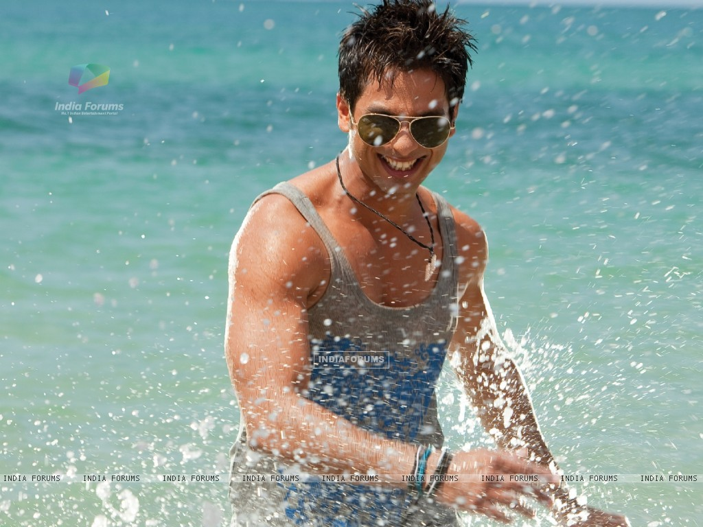 Shahid Kapoor looking hot (59483) size:1024x768