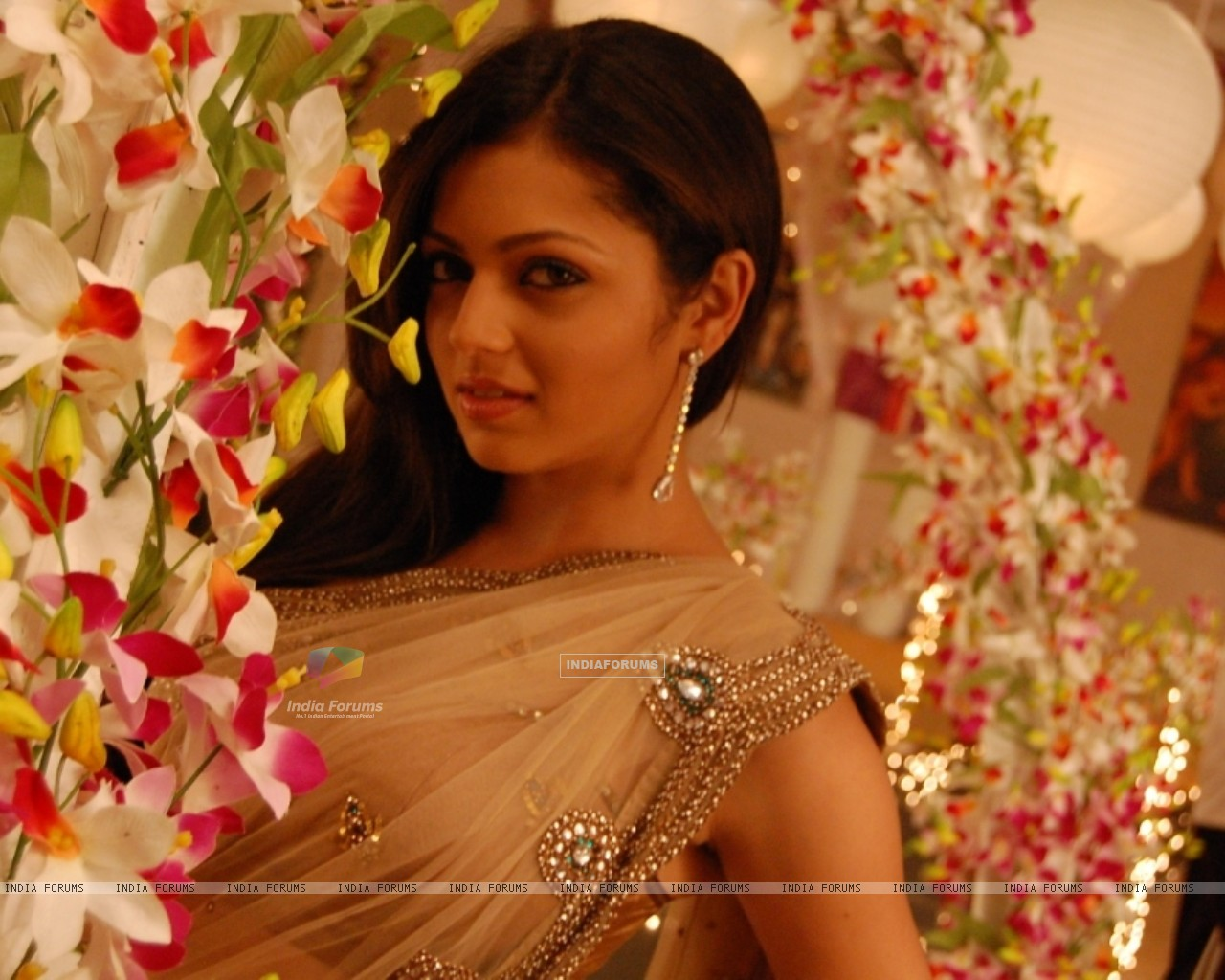 Wallpaper - Drashti Dhami as Geet (101628) size:drashti dhami