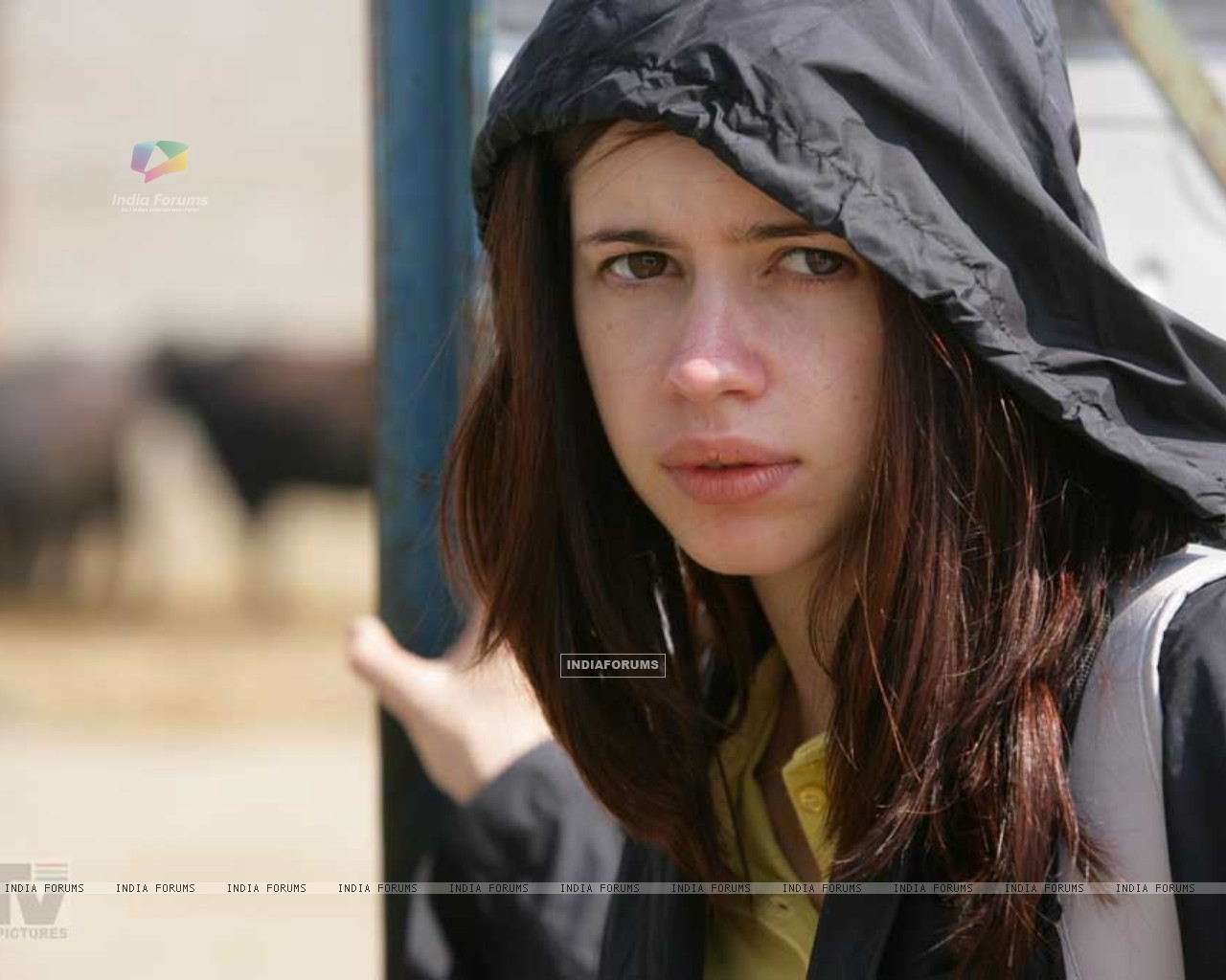Still of Kalki Koechlin in Dev D (12477) size:1280x1024