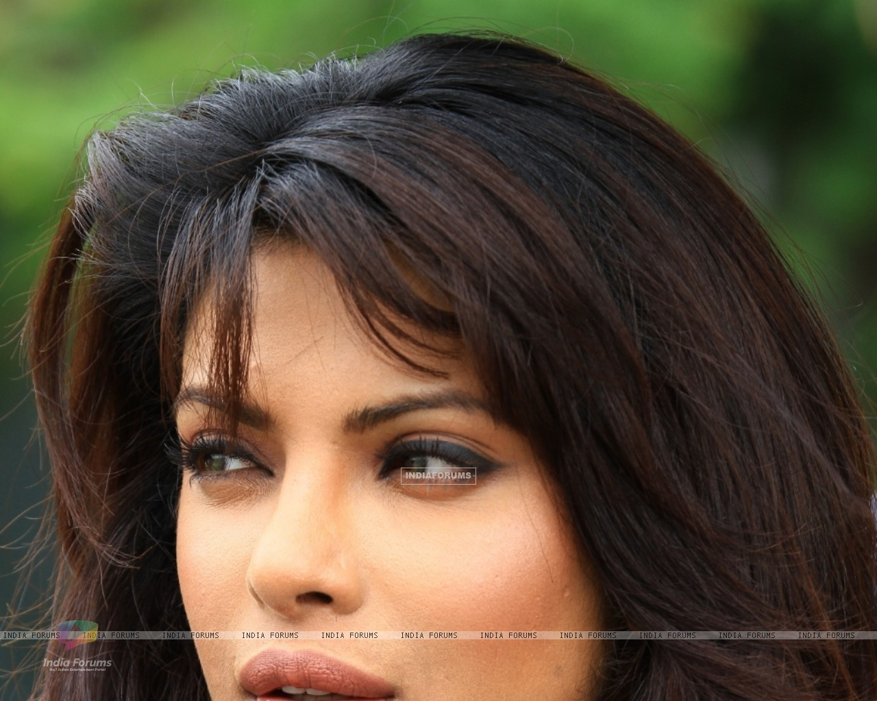 Priyanka Chopra as a host (96052) size:1280x1024