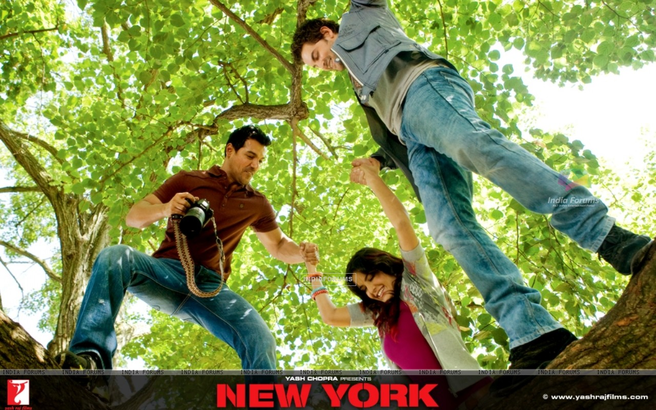 John,Katrina and Neil Nitin climbing on a tree (12385) size:1280x800