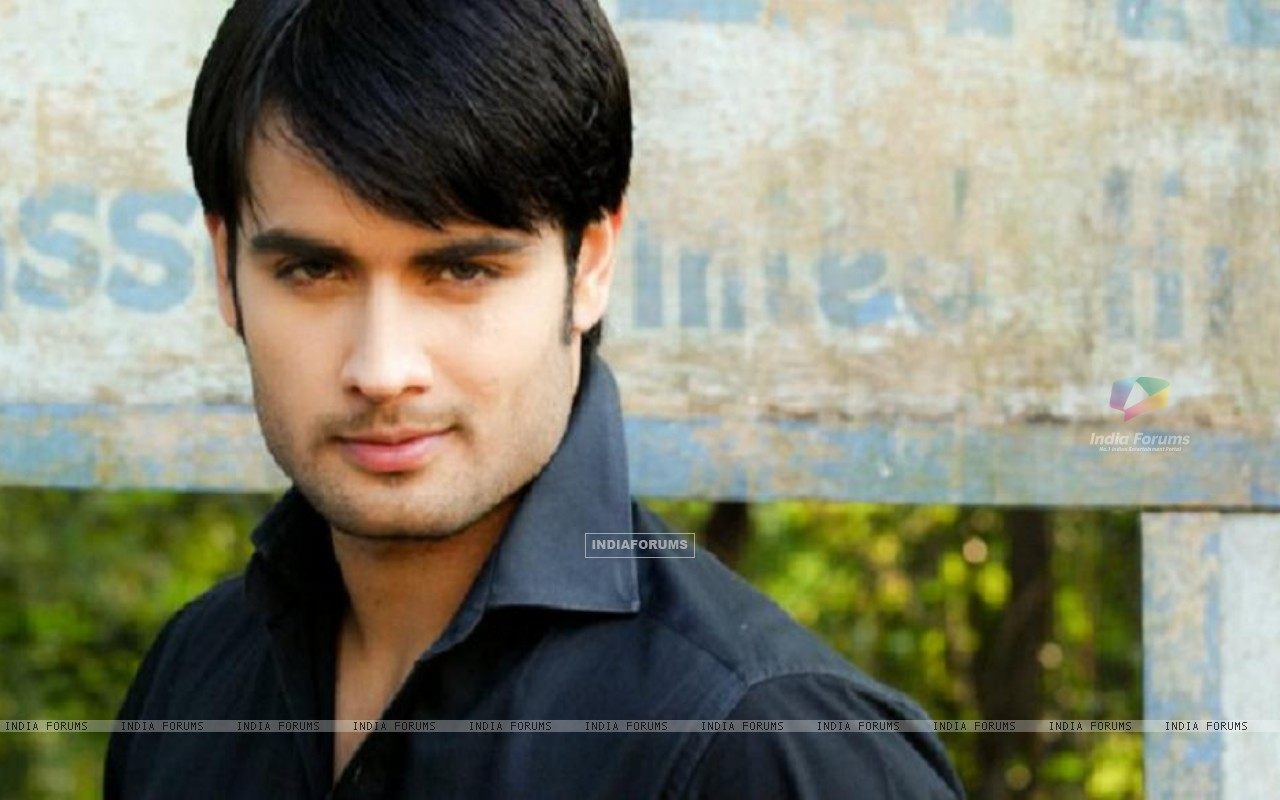 http://img.india-forums.com/wallpapers/1280x800/148656-vivian-dsena.jpg