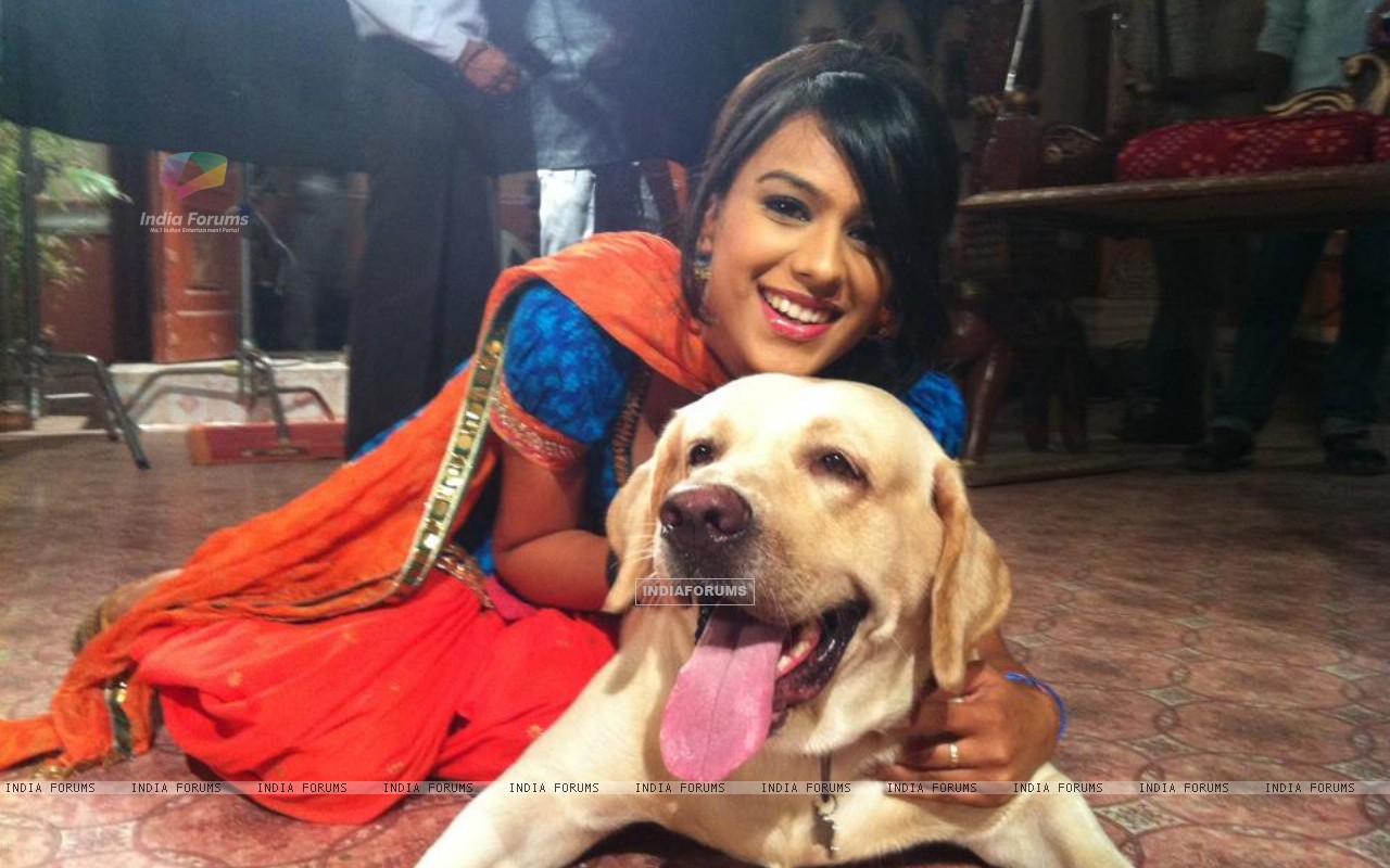 Nia Sharma on sets of Ek Hazaaron Mein Meri Behna Hain (173339) size:1280x800