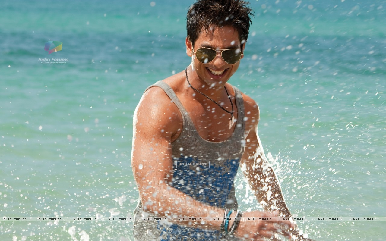 Shahid Kapoor looking hot (59483) size:1280x800