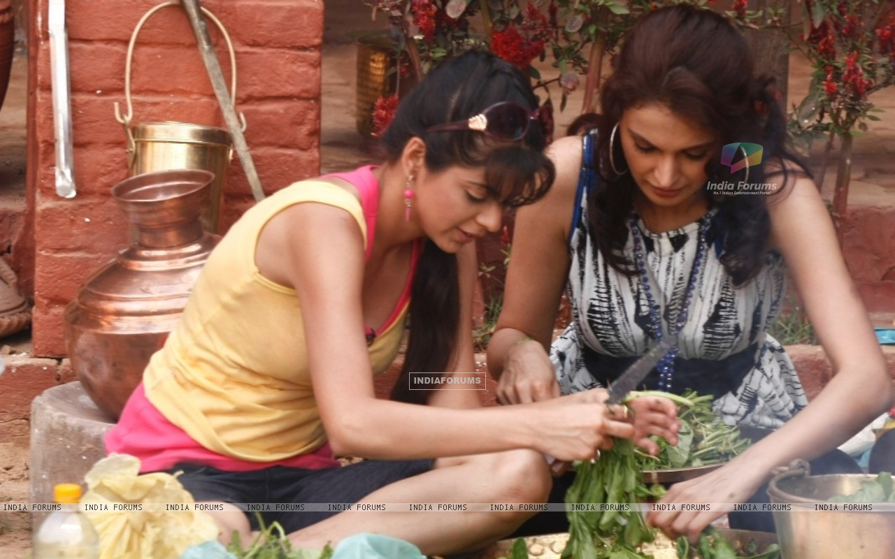 Monica and Rucha cutting vegetables (65863) size:1280x800