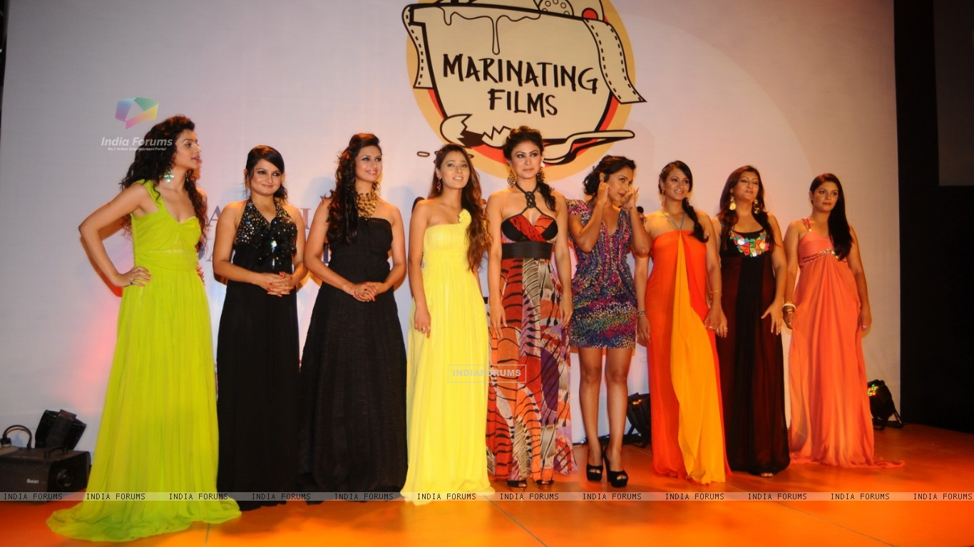 Sukirti Kandpal, Jiaa Manek, Pooja Gor and others at the Launch of Marinating Films Calendar 2012 (193476) size:1366x768