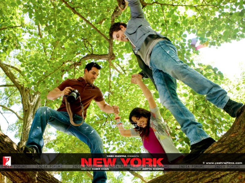 John,Katrina and Neil Nitin climbing on a tree (12385) size:800x600